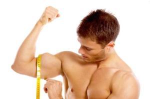 biceps_grandes_2