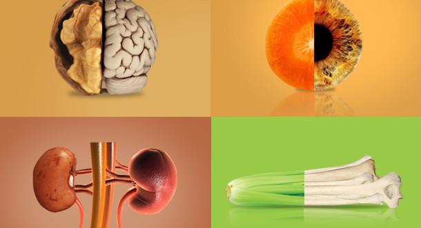 saúde alimentos cuidados