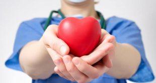 saúde, doação de orgãos, dia mundial da doação de orgãos